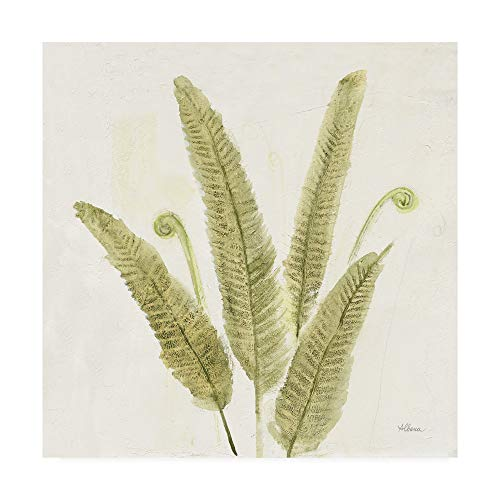 Trademark Fine Art Forest Ferns II v2 by Albena Hristova, 35x35 (Fiddlehead Fern Frond)