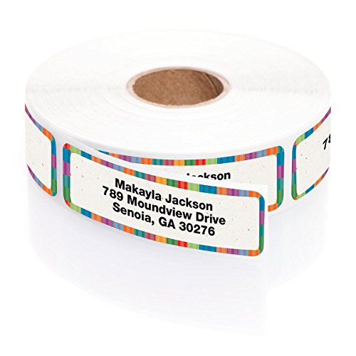 Holiday Stripes Address Label (Bright Stripes Designer Rolled Address Labels with Elegant Plastic Dispenser)