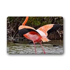 """Custom flamingo Doormat Outdoor Indoor 23.6""""x15.7"""" about 59.9cmx39.8cm"""