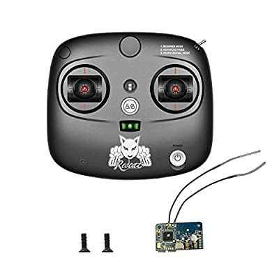 Redcat Racing 2.4Ghz Remote and Receiver with Screws (6mm) Vehicle: Toys & Games