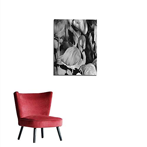 longbuyer Wall Paper Flamingo s at San Diego Zoo Photographed in Monochrome Mural 24