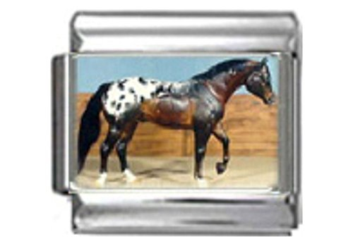 APPALOOSA STALLION HORSE Photo Italian Charm 9mm Link - 1 x HO015 Single Bracelet Link