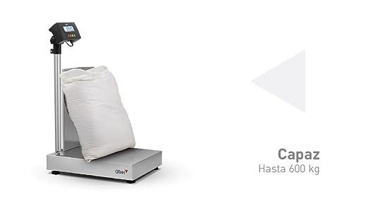 Báscula industrial Gram Precision modelo ZMissil F3-300 (300Kg/50g) dimensiones del plato 600x500mm.modelo 2017: Amazon.es: Industria, empresas y ciencia