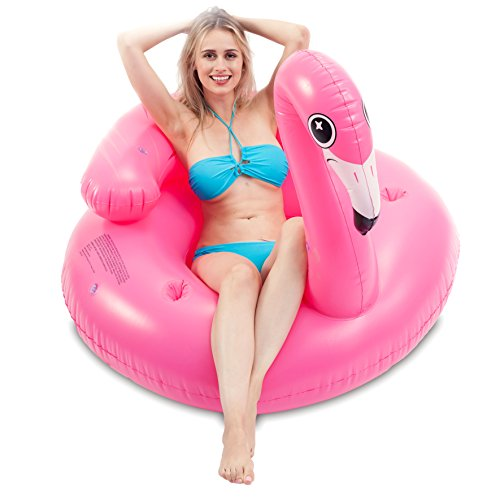 Cute Tubes - JOYIN Inflatable Flamingo Tube, Pool Float,
