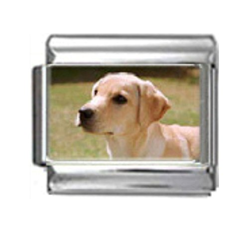 LABRADOR RETRIEVER DOG Photo Italian Charm 9mm - 1 x DG264 Single Bracelet Link