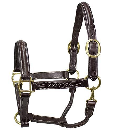 Paris Tack American Elite Series USA Leather Fancy Stitch Padded Halter - Havana (Fancy Horse Halters)