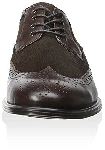 Mens Medallion Chestnut Nelson amp; Light Wingtip Franklin Freeman Oxford Brown En17X1xqW
