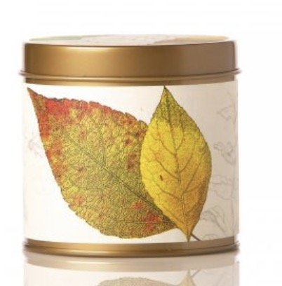 Rosy Rings Signature Tin Candle (Honey Tobacco) Pumpkin Blossom Honey