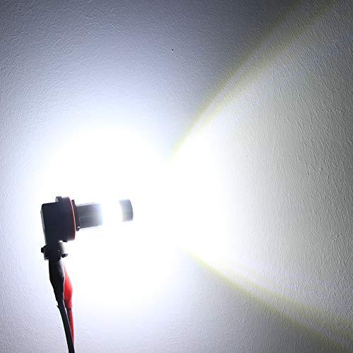 Buy lights for fog