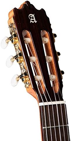 Guitarra Clásica Alhambra Iberia Ziricote (4/4): Amazon.es ...