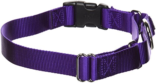 - PetSafe Martingale Collar with Quick Snap Buckle, 1