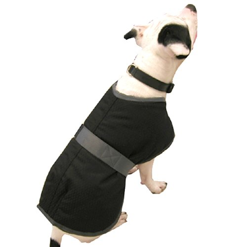 High Spirit Dog Rain Coat, Black/Grey, 26-Inch by High Spirit