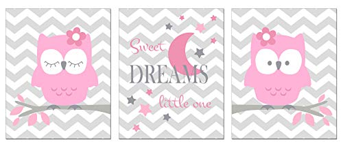 Cute Pink Owl Home Wall Decor Prints - 3 Piece Decoration Photo Set - for Baby Girls Bedroom/Nursery/Playroom Art - Blush Pink Sleeping Nature Woodland Owl Animal and Sweet Dreams -