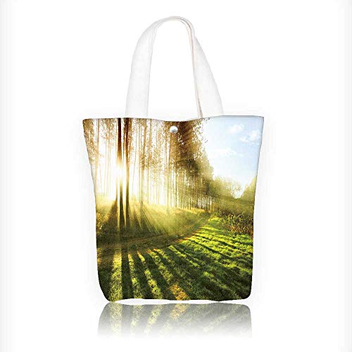 Ladies canvas tote bag Rainbow Hot Air Balloon reusable shopping bag zipper handbag Print Design W11xH11xD3 INCH