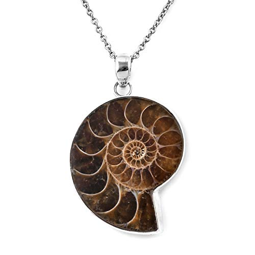 (925 Sterling Silver Ammonite Chain Pendant Necklace for Women Jewelry Gift 18