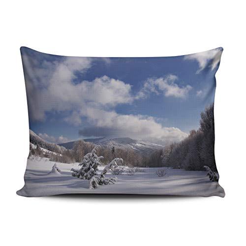 WULIHUA Decorative Throw Pillow Covers Winter Snowing San Rafael Falls Fine Zipper Pillowcases Throw Pillow Cushion Covers for Sofa One Side Printed Boudoir 12x16 ()
