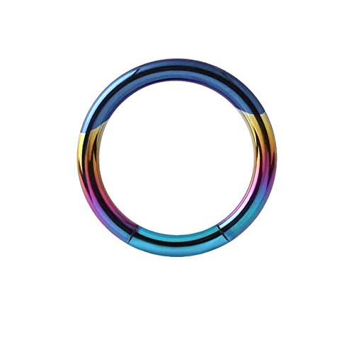 Titanium Smooth Segment Ring - Rainbow 1.6mm x (Smooth Segment Rings)