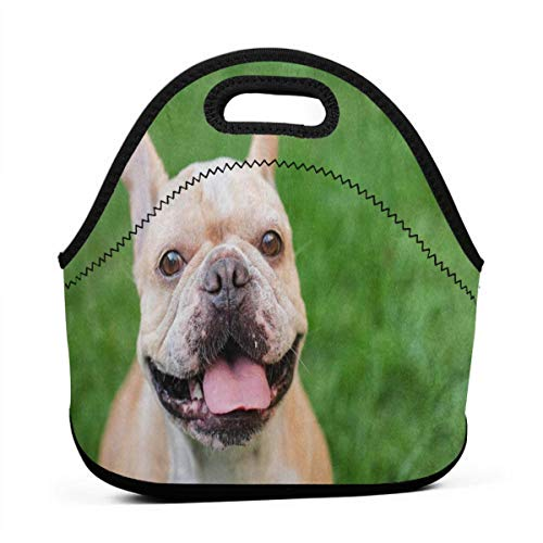 (Portable Lunch Bag Tote French Bulldog Green Grass Neoprene Lunch Handbag Food Zipper Storage Lunch Box For Men Women Kids)
