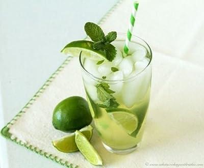 Mojito Mint * 1000 Seeds * Rare * Herb * Medicinal * Aroma *