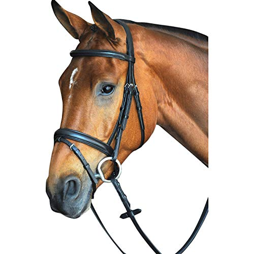 (Collegiate CC Pad Raised Flash Bridle Cob Black )