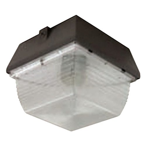 Hubbell Outdoor Lighting S9-70H 70-Watt Pulse Start Metal Halide Compact Vandal Resistant Ceiling/Wall Mount