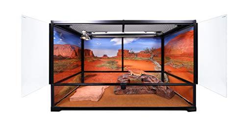 custom terrarium - 7