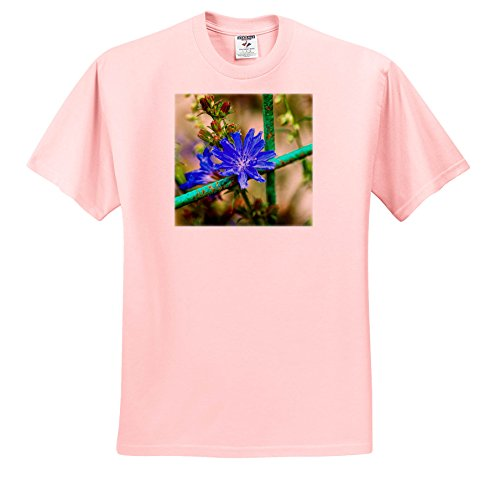 Chicory Apparel - 3dRose Alexis Photography - Flowers - Blue Chicory Flower, Green Metal grating, Soft Background - T-Shirts - Toddler Light-Pink-T-Shirt (2T) (TS_267229_47)