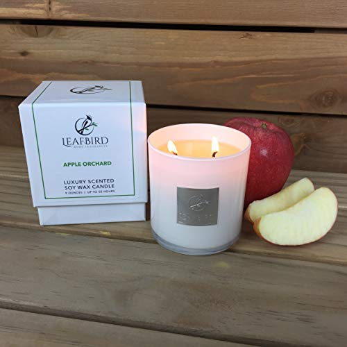 (Apple Orchard Fragrance   LeafBird Luxury Scented Candle   Natural Soy Wax with Strong Fragrance   Luxury Gift Box Included)