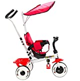 4-in-1 Kids Baby Stroller Tricycle Training Learning Toy Bike w/Canopy Basket