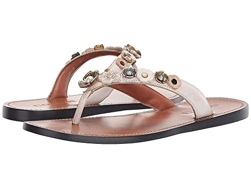 (Coach Women's Tea Rose Multi Thong Sandal - Leather Chalk 5.5 B US)