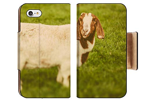 Luxlady Premium Apple iPhone 8 Flip Pu Wallet Case Image ID: 34232218 Goat on a Green Grass as Sign of 2015 Year by Chinese Calendar Vintage t