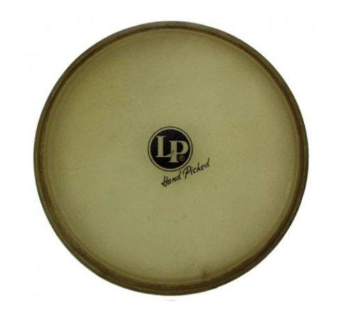 Latin Percussion LP274C 12-1/2-Inch Galaxy Rawhide Tumba Conga Head