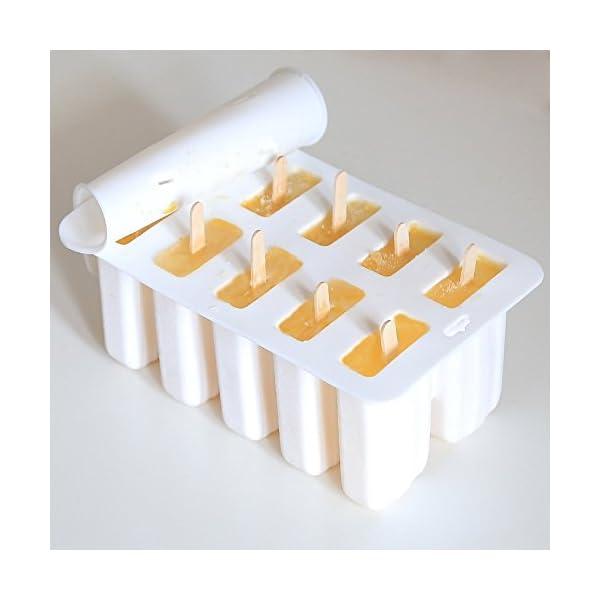 TOOGOO Gel di silice Stampo per Gelato Stampo per ghiacciolo Stampo per Gelato Popsicle Stampo per Gelato 10 con Stampo… 2 spesavip
