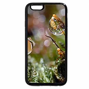 iPhone 6S / iPhone 6 Case (Black) GRASSES WEEDS AND REFLECTIONS