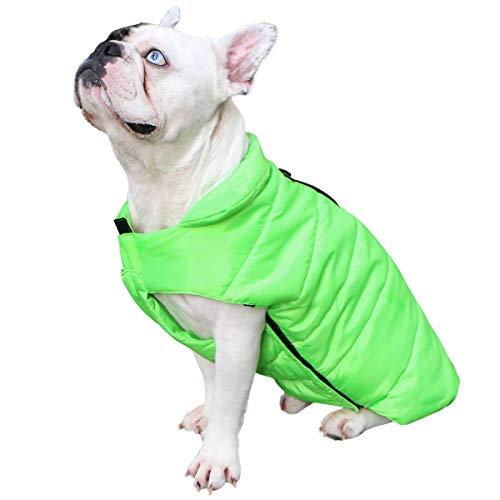 E Invierno Otoño Algodón De Verde Ropa Withu Perro Abrigo Acolchado Para H6qxn8Ra