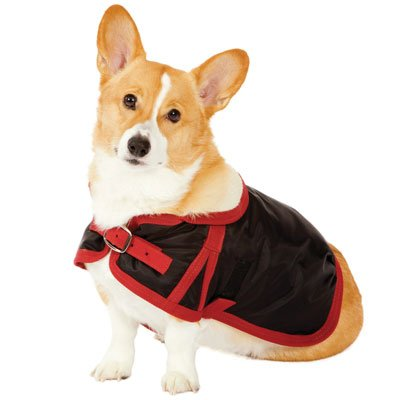 Fashion Pet Classic Country Dog Coat, Black Small, My Pet Supplies