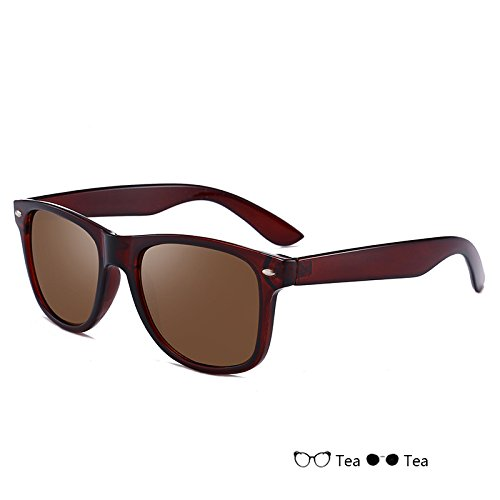 hombre para del de nocturna hombre gafas sol Gafas Sunglasses TL de Gafas azul conducción Tea de polarizadas gafas Vintage visión wXFRYWPx