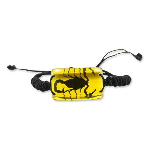 REALBUG Black Scorpion Bracelet, Amber (Real Bug Insect Amber Bracelet)