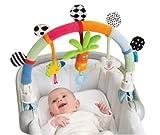 Taf Toys Rainbow Arch. Baby Stroller Activity Center - Pram Activity Center