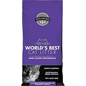 World's Best Cat Litter, Scented Clumping Litter Formula for Multiple Cats, 28-Pounds 10