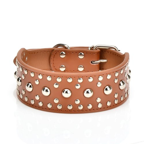 Studded Large Dog Collar