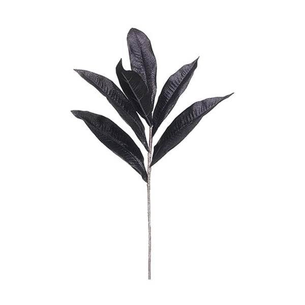 SilksAreForever 32.5″ Halloween Frangipani Plumeria Silk Stem -Black (Pack of 36)