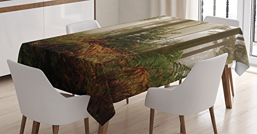 Dark Brown Forest Green - Ambesonne Farm House Decor Tablecloth, Mystical Dark Fog Atmosphere Deep in the Forest Woodland Nobody Silence Image, Rectangular Table Cover for Dining Room Kitchen, 60x84 Inches, Brown Orange Green