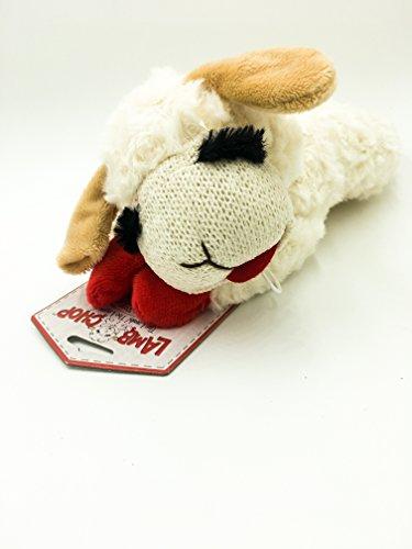 Mini Lamb Chop 6