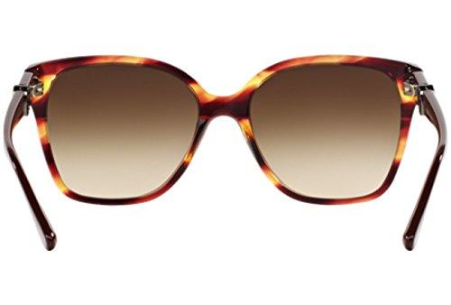 516913 Adulto Gafas Sol de Marrón Unisex Tortoise Armani 0Aq7Fx