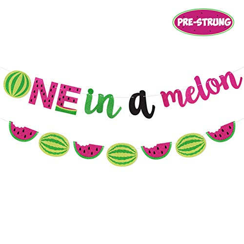 Yaaaaasss! One in a Melon Banner Watermelon 1st Birthday Party Supplies Hot Pink Green Glitter Watermelon Themed Garland Decor Set Summer Fruit Decorations