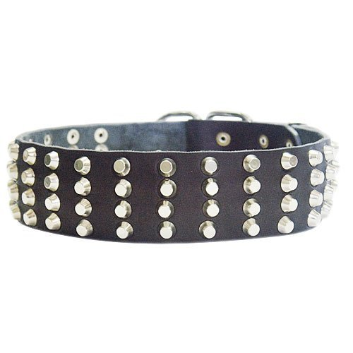 Dean and Tyler 4 ROW STUDS , Extra Wide Dog Collar with Strong Nickel Studs Black Size 20-Inch by 2-1 4-Inch Fits Neck 18-Inch to 22-Inch