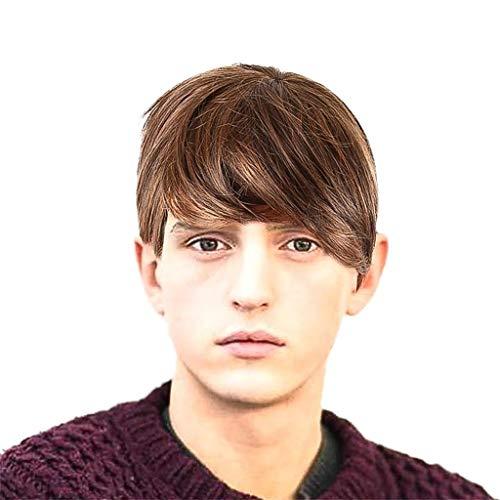 Diy-Wig , Puyujin Fashion Natural Men Boy Short Black Synthetic Hair Full Wig Casual Party Rose Net Wigs (Brown) ()