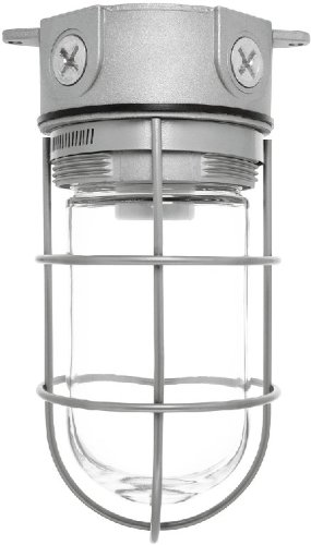 """Price comparison product image RAB Lighting VX100G Vaporproof VX 4"""" Ceiling Box Mount with Glass Globe and Wire Guard,  A19 Type,  Aluminum,  150W Power,  1 / 2"""" Hub,  Natural"""