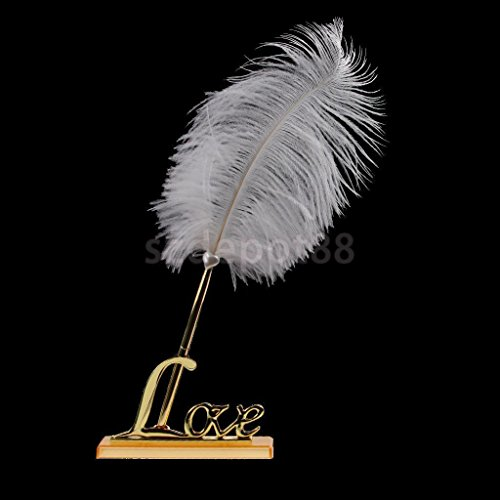 NPLE--Romantic Guest Book Signing Pen Rose Flower Feather Love Holder Wedding Gifts (With Words Autumn Go That)